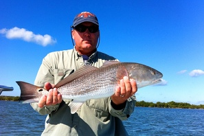 brown redfish