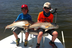 Indian River Lagoon redfish