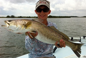 oak hill gator trout