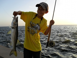 snook caught on fly