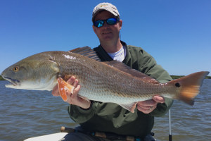 red drum fishing charter spring new smyrna florida