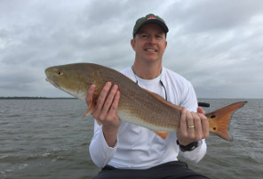 catching red drum on live bait in mosquito lagoon