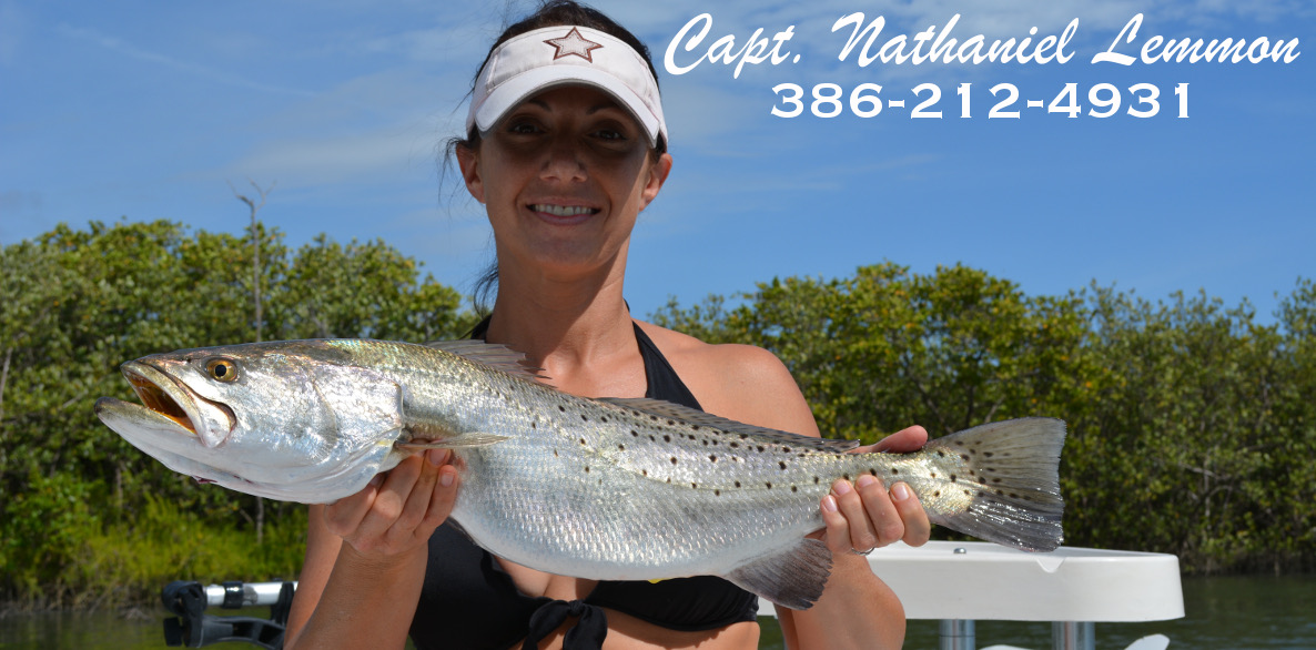 Mosquito lagoon fishing report florida sight fishing for Indian river inlet fishing report